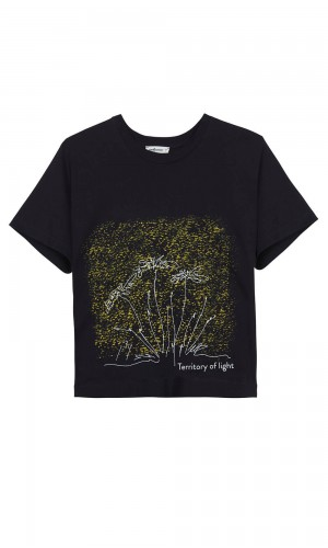 Territory of Light T